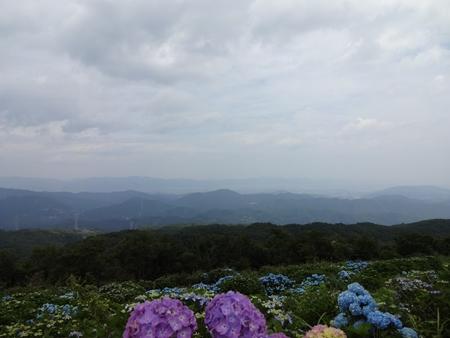 大川原から神山へ_e0201281_6252444.jpg