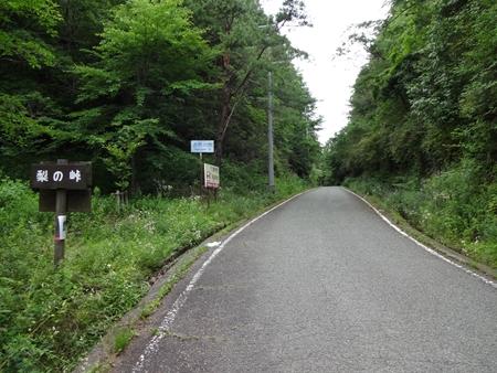 大川原から神山へ_e0201281_629721.jpg