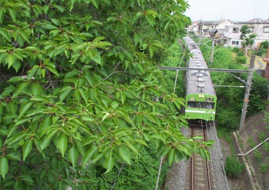 田園風景を走る緑のJR_f0266284_2320582.jpg