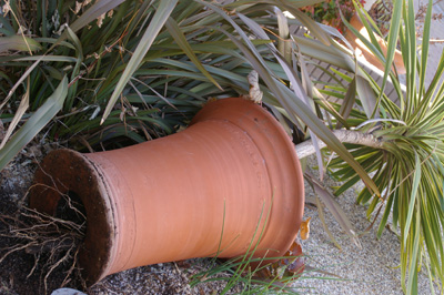 Whichford potの底穴の秘密_d0229351_18153897.jpg