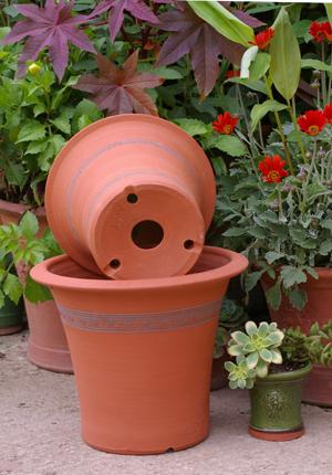 Whichford potの底穴の秘密_d0229351_18483194.jpg