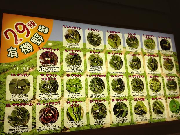 新大久保で有機野菜(サンパ)を楽しむ_b0060363_17255441.jpg