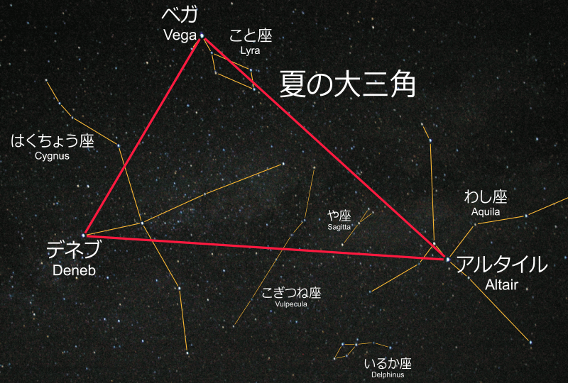 a0116490_8261531.png
