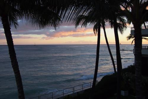 ハワイ♪  La Mer _e0154202_12175990.jpg