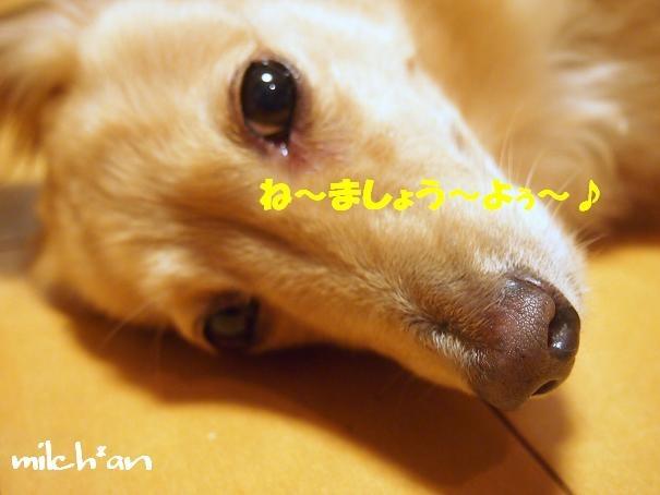 b0115642_22434680.jpg