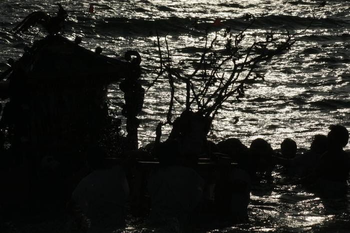 秋谷神明社御祭禮 2013 神輿-2_f0156448_2305555.jpg