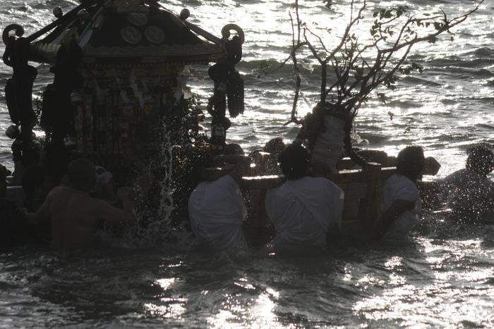 秋谷神明社御祭禮 2013 神輿-2_f0156448_231138.jpg