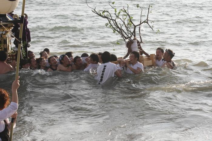 秋谷神明社御祭禮 2013 神輿-2_f0156448_2331485.jpg