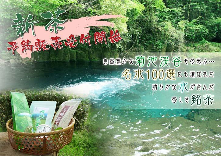菊池水源茶 平成25年度新茶!好評発売中!!_a0254656_1725455.jpg