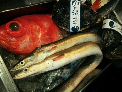 鮮魚_f0187266_1438172.jpg