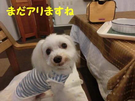 b0193480_20485041.jpg