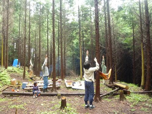 6月8日(日)「きらめ樹実習会フィナーレ&森ヨガ」のお知らせ_e0263590_14584930.jpg