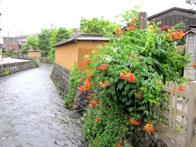第5話 雨のなか、長町の武家屋敷跡を巡る_f0100593_12495478.jpg