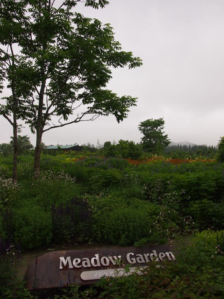 北海道ガーデン街道を訪ねて(5)十勝千年の森・メドウガーデン_f0276498_23295587.jpg
