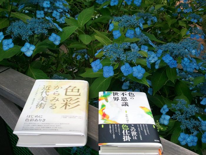 【藤野アトリエ】「色彩本2冊」2013.07.08_b0143239_934741.jpg