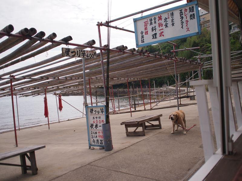 一日だけの海の家 in 今井荘_b0279058_13514846.jpg