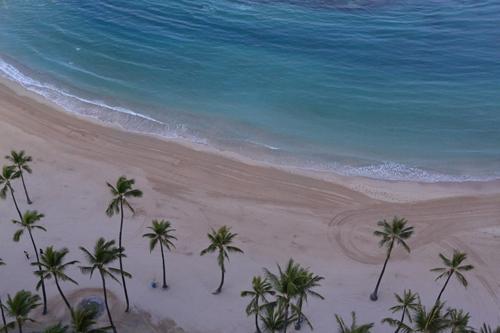 ハワイ♪  楽しかった☆_e0154202_2072346.jpg