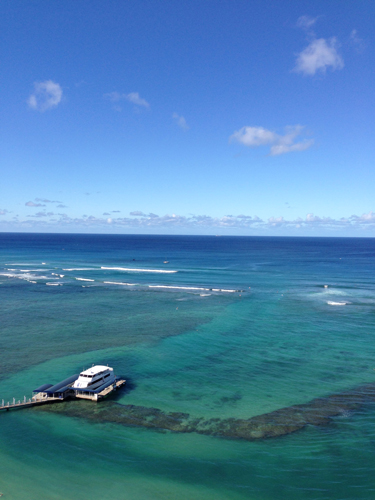 ハワイ♪  楽しかった☆_e0154202_2074483.jpg