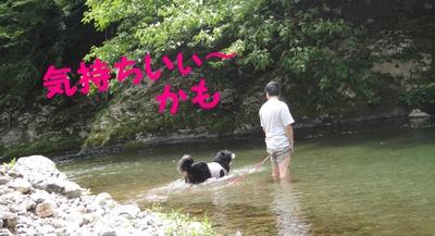 今年初泳ぎ_e0270846_12451730.jpg