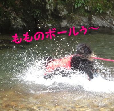 今年初泳ぎ_e0270846_15265978.jpg