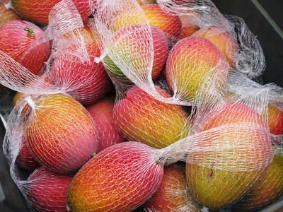 樹上完熟アップルマンゴー 煌(きらめき)はほんの1割の極選マンゴーなんです!!_a0254656_18442188.jpg