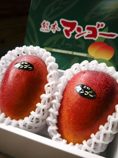 樹上完熟アップルマンゴー 煌(きらめき)はほんの1割の極選マンゴーなんです!!_a0254656_18532543.jpg
