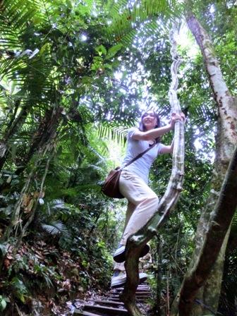 山ガールのジャングル体験_a0132757_1153238.jpg