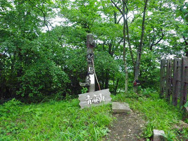 青麻山トレーニング ~ 2013年7月11日_f0170180_21283444.jpg