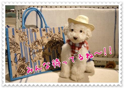f0170910_13501380.jpg