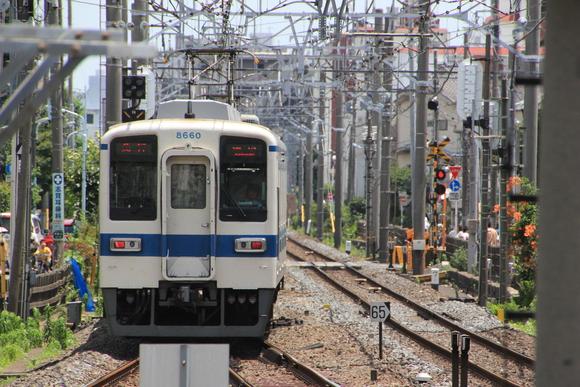 東武鉄道 撮り鉄_d0202264_5353958.jpg