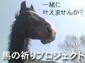 競走馬を救え!プロジェクト
