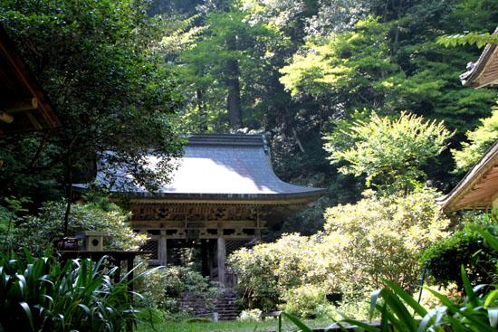 新日本風土記 京都鴨川2_e0048413_17422875.jpg