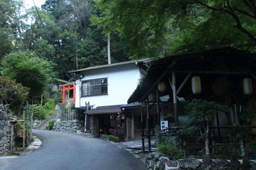 新日本風土記 京都鴨川2_e0048413_17424790.jpg