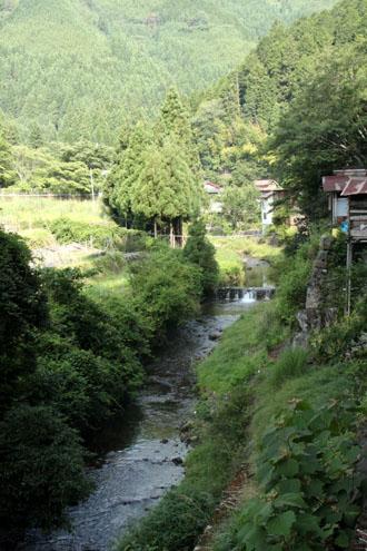 新日本風土記 京都鴨川2_e0048413_17431147.jpg