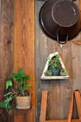吊るし緑と壁かけ緑_d0263815_17153133.jpg