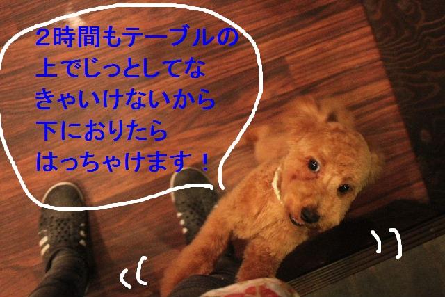 b0130018_22521647.jpg