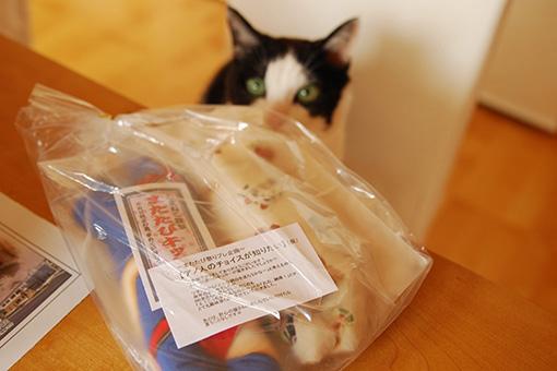 またたび祭りプレ企画!ヒト・猫おいしいしまねこ便♪_b0259218_020235.jpg
