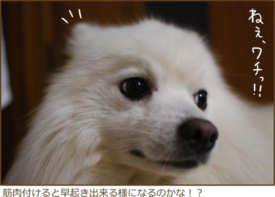 d0212419_1922073.jpg