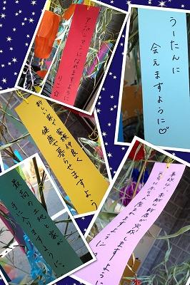 f0120320_16515981.jpg