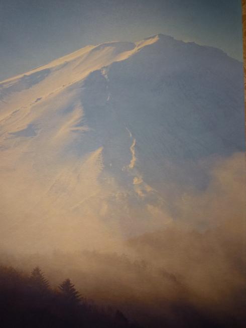 世界遺産登録祈念「大・富士山展」 ~世界で一番美しい ボストン美術館 門外不出の浮世絵コレクション~_a0053662_125853.jpg