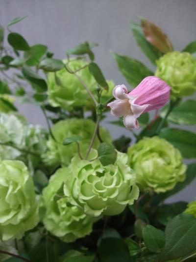 オークリーフ(紫陽花&クレマチス&トルコキキョウ)_f0049672_13185713.jpg