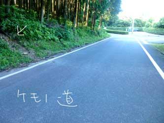 b0057675_840394.jpg
