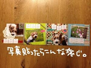 b0092580_5155886.jpg