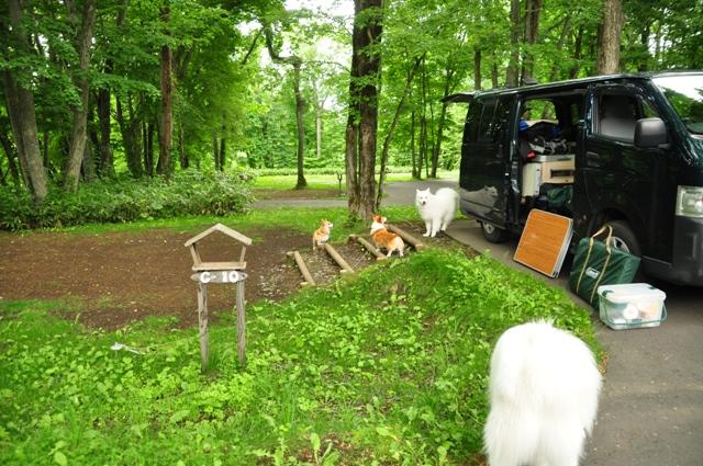 古山貯水池自然公園オートキャンプ場_f0212597_13143171.jpg