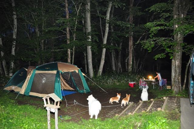 古山貯水池自然公園オートキャンプ場_f0212597_13172687.jpg