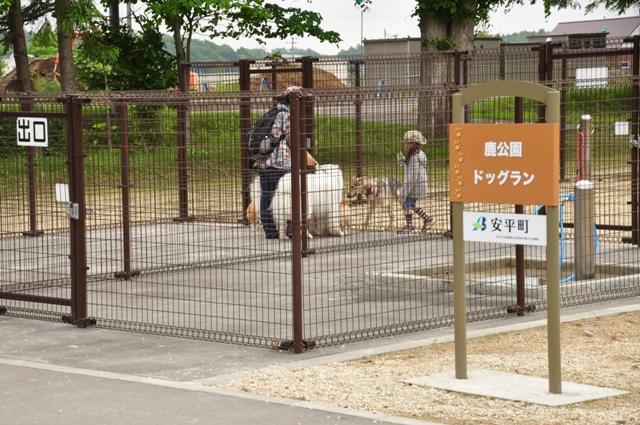 古山貯水池自然公園オートキャンプ場_f0212597_13261934.jpg