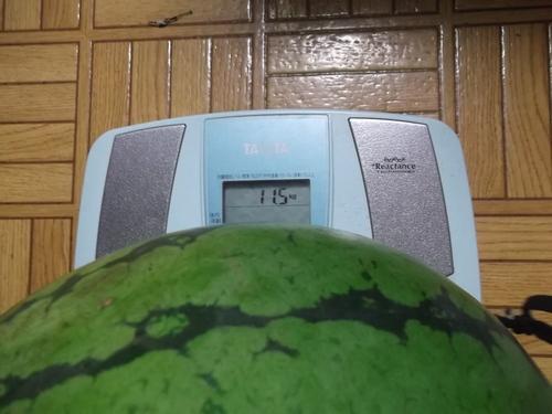 スイカの初収穫...味は数日後に!_b0137932_19555551.jpg