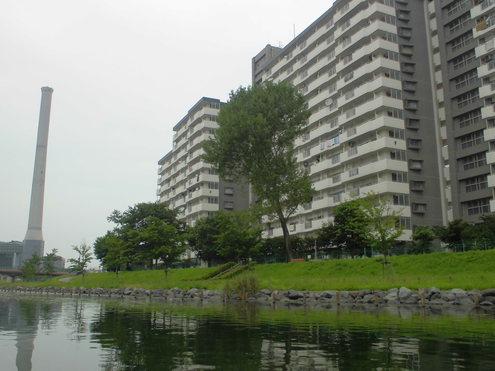 猛暑日の旧中川_c0249569_16442675.jpg