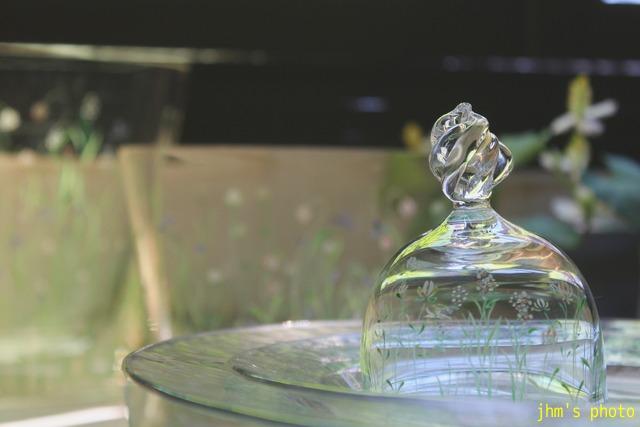 透き通る光とガラス模様_a0158797_0461564.jpg