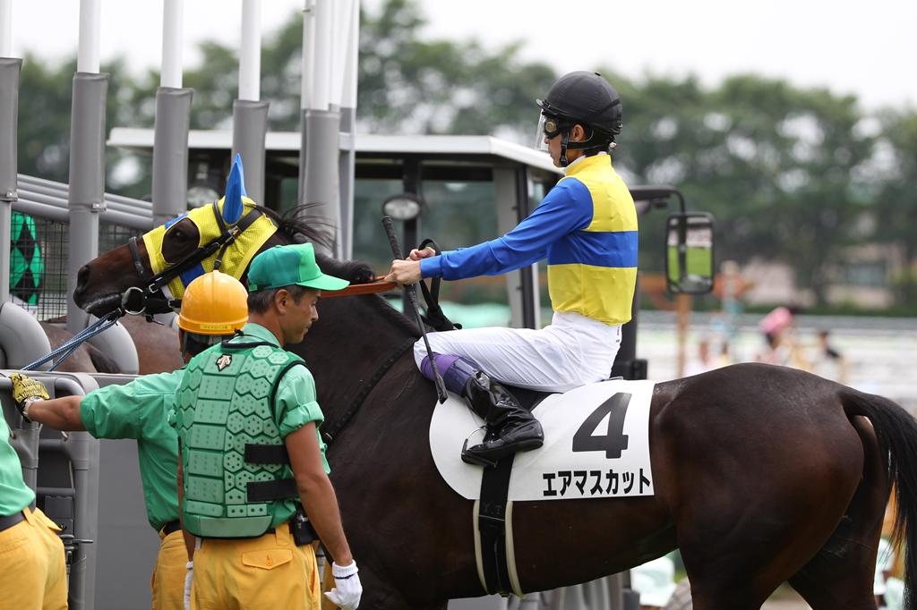 2013年7月14日 函館記念_f0204898_22535314.jpg